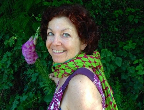 Participant Spotlight: Jill Koenigsdorf